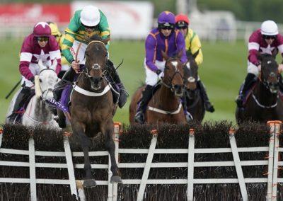 Punchestown Races